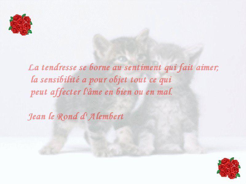 Les Citations Et Poemes Page 14
